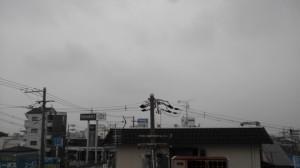 NCM_0126.JPG